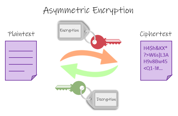 Asymmetric Encryption: A public key is used to encrypt plaintext into ciphertext whereas a private key is used to decrypt a ciphertext.