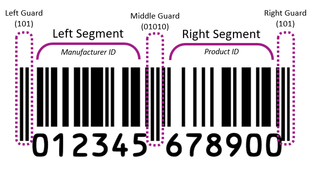 barcode-anatomy