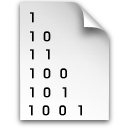 binary-file