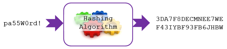 hashing-algorithm-password