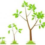 Recursive Tree Challenge
