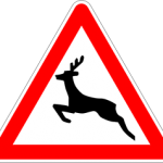 road-sign-deer
